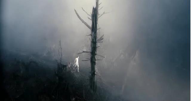 antichrist-tree